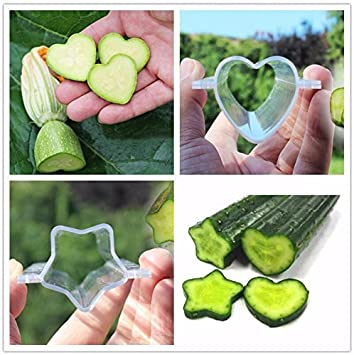 New Heart Shape Cucumber Shaping Mold Vegetable Growth Forming Mould Tool