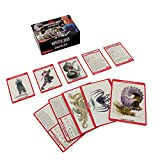 Dungeons & Dragons Spellbook Cards: Monsters 6-16