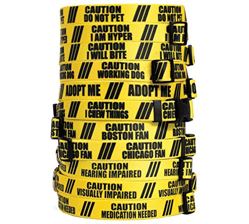 Caution I Will Bite 2 Inch Wide Big Dog Collar - Size Large 18 to 28 inch long x 2 inch wide