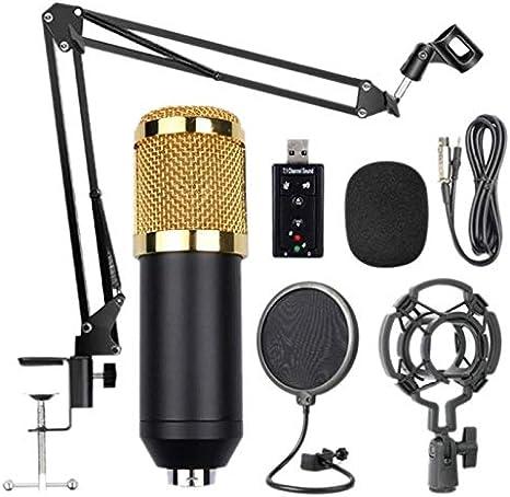 Haudang Bm800 Kit de micrófono de suspensión profesional estudio transmisión en vivo grabación condensador micrófono conjunto
