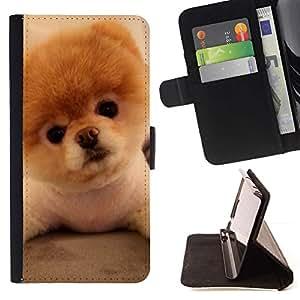 Momo Phone Case / Flip Funda de Cuero Case Cover - Perrito de Pomeranian de oro del perro de Brown; - Samsung Galaxy A5 ( A5000 ) 2014 Version