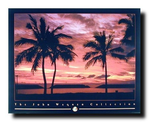 Tropical Hawaii Sunset Ocean Beach Landscape Scenic Wall Decor Art Print Poster  16X20