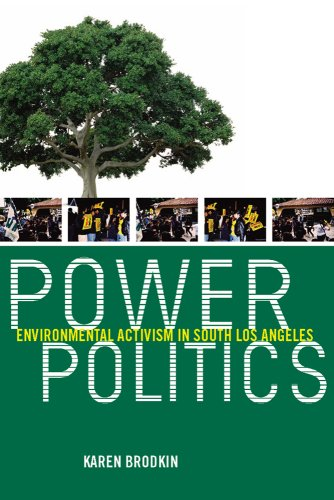 Power Politics: Environmental Activism in South Los Angeles (Environmental Science Activities For High School Students)