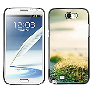 Hot Style Cell Phone PC Hard Case Cover // M00102298 grass nature roadside // Samsung Galaxy Note 2 II N7100
