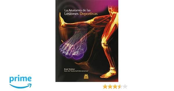 ANATOMÍA DE LAS LESIONES DEPORTIVAS, LA Color Medicina: Amazon.es ...