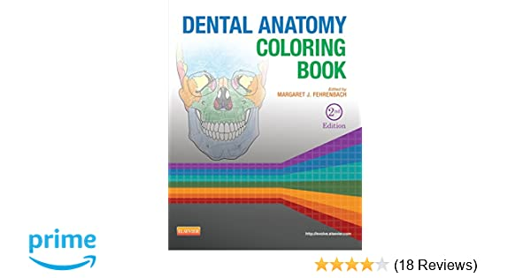Dental Anatomy Coloring Book: 9781455745890: Medicine & Health ...