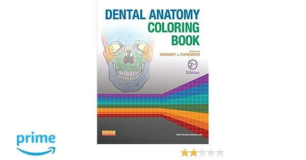 Dental Anatomy Coloring Book: Margaret J. Fehrenbach RDH MS ...