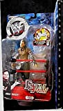 Jeff Hardy WWF Wrestling Fatal 4-way Collectors Edition Action Figure with Ring Accessory by Jakks