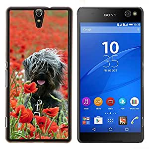 YiPhone /// Prima de resorte delgada de la cubierta del caso de Shell Armor - Surfer Perro En Campo - Sony Xperia C5 Ultra