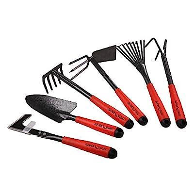 FLORA GUARD 6 Piece Garden Tool Sets - Including Trowel,5-Teeth rake,9-Teeth Leaf rake,Double Hoe 3 prongs, Cultivator, Weeder, Gardening Hand Tools High Carbon Steel Heads