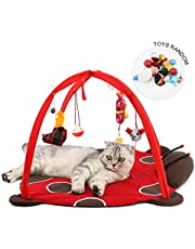 AOLVO Cat Play Mat, Cat Tent Cat Play Mat Activity Center with 4 Hanging Toys, Cat Tent Bed Cat Playing Mat Bed House Playing Toys Gift for Cat