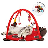 Cat Play Mat, Foonee Foldable Cat Tent Bed with Hanging Toys to Exercise and Keep Pet Active, Cat Activity Center Happy Playing Pad, Random Pendants
