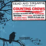 Dead And Dreaming: An Indie Tribute To Counting