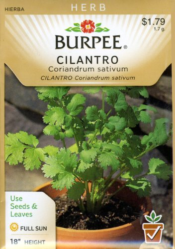 - Burpee 66035 Herb Cilantro Seed Packet