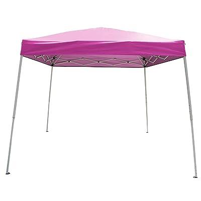 Polar Aurora 10' X 10' 5 Color Slant Leg Easy Pop up Popup Canopy Party Sun Shade Tent (Pink) : Garden & Outdoor