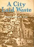 img - for A City Laid Waste: Tornado Devastation at Gainesville, GA, April 6, 1936 book / textbook / text book