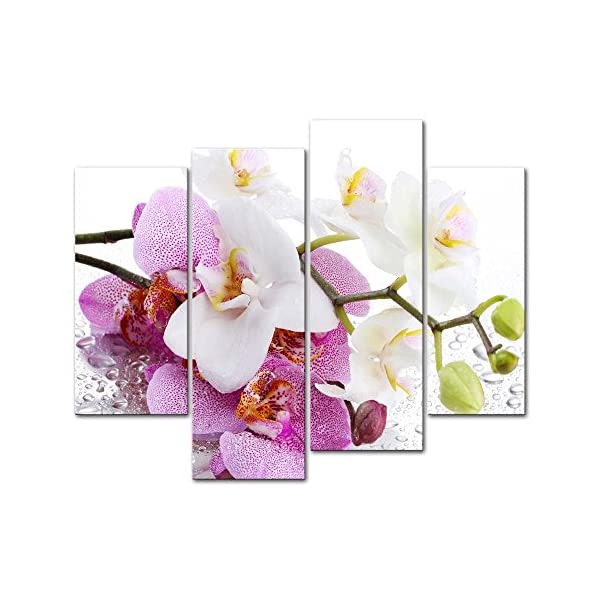 4 Pieces Modern Canvas Painting Wall Art The Picture for Home Decoration Butterfly Orchid in Pink and White with Drop of Water On White Background Flower Print On Canvas Giclee Artwork for Wall Decor