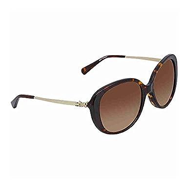 5cb6f02574 Coach Women s HC8215F Sunglasses Black Dark Grey Solid 57mm at ...