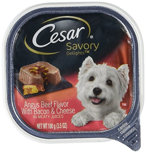 Cesar SAVORY DELIGHTS Wet Dog Food Angus Beef Flavor with Cheese & Bacon, (Pack of 24) 3.5 oz. (Beef Flavor)