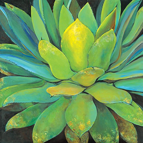 - Portfolio Canvas Decor Large Printed Canvas Wall Art Painting, 35 by 35-Inch, Agave, Framed and Stretched Ready to Hang
