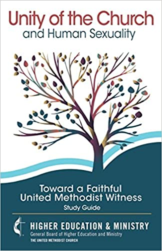United methodist book of discipline homosexuality statistics