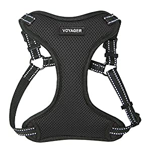 Best Pet Supplies Voyager - Fully Adjustable Step-in Mesh Harness with Reflective 3M Piping (Black, X-Small)
