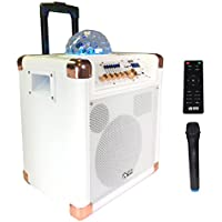 "EMB PRO PKL550W 8"" Rechargeable Portable Bluetooth Trolley 500W Max w/ LED Light Effects Boom Box USB/SD/FM/AUX w/ Trolley LED Lights 7 Hours Battery For Party/Karoke/DJ"