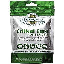 Oxbow Critical Care Apple/Banana Pet Supplement, 141gm