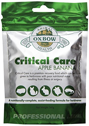 (Oxbow Critical Care Apple/Banana Pet Supplement, 141gm)