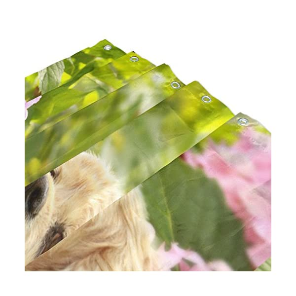 My Daily English Cocker Spaniel Dog Flower Shower Curtain 60 x 72 inch with Bath Mat Rug & Hooks, Waterproof Polyester Decoration Bathroom Curtain Set 3