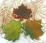 Fresh Handmade Big Autumn Leaf All Natural Hand Glycerin Soap 1 Bar