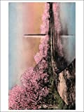 Washington DC - Cherry Blossom View of WA Monument (Playing Card Deck - 52 Card Poker Size with Jokers)