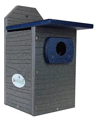 JCs Wildlife Recycled Poly Lumber Gray and Blue Standard Bluebird Bird House