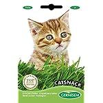 Germisem-Catsnack-Semi-di-Erba-per-Gatti-10-g