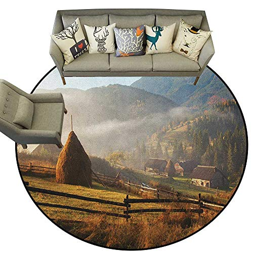 (Woodland,Carpet Flooring Morning Mist Haze in Mountain Woodland Autumn Dawn Houses Fences Landscape D60 Soft Area Rug for Children Baby )