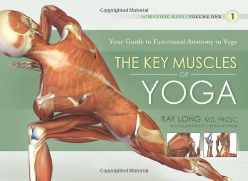 The Key Muscles of Yoga: 1