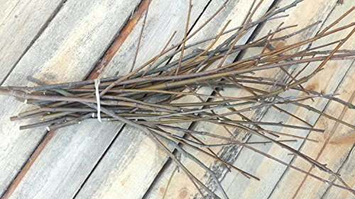 - 25 Rowan Wood Twigs. Rowan Sticks. Decorative Rowan Branches Bundle. Rustic Home Decor. Rowan Twigs. Home Protective Branches.