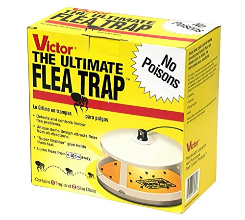 Victor M230 Ultimate Flea Trap pakc of 4
