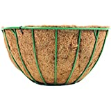 """Wire Grow Basket With Coco Liner - 12"""" - Green"""