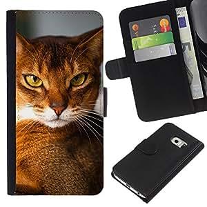 Abyssinian Chausie Orange Cat Breed - la tarjeta de Crédito Slots PU Funda de cuero Monedero caso cubierta de piel Samsung Galaxy S6 EDGE