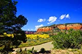 Red Cliffs of New Mexico