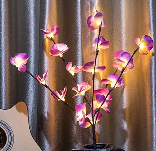 FUNISFUN 2 Pack Moth Orchid Branch Lights Battery Powered, 30 Inches 20 LED Lights Flowers Each, Warm White Led Bouquet Branches Artistic Twig Tall Vase Filler for Home Decoration(Purple and White)]()