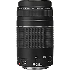 Canon EF 75-300mm f/4-5.6 III Zoom Lens for Canon EOS 7D, 60D, EOS Rebel SL1, T1i, T2i, T3, T3i, T4i, T5i, XS, XSi, XT, XTi Digital SLR Cameras + RADIO ELECTRONICS USA Micro Fiber Cleaning Cloth