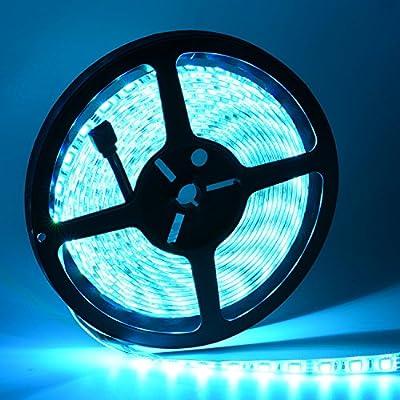 Waterproof LED Strip Lights kit, Oak Leaf SMD5050 16.4ft RGB Strip Light for Lighting and Decoration