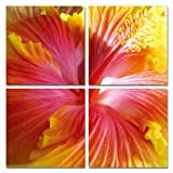 Modrest Hibiscus 4-Panel Photo on Canvas Red