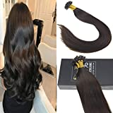 Sunny 16inch #2 Darkest Brown Pre Bonded Keratin Fusion Tips Human Hair Remy Straight Human Hair U Tip Extensions Total 50g