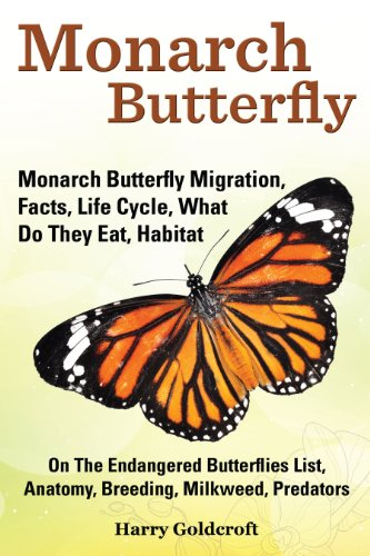 Monarch Butterfly: Monarch Butterfly Migration, Facts, Life Cycle ...