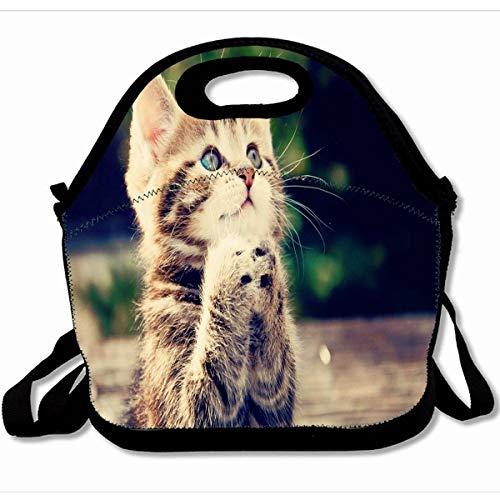 Ahawoso Reusable Insulated Lunch Tote Bag Kitten Cat 10X11 Zippered Neoprene School Picnic Gourmet Lunchbox