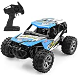 HALOFUN RC Cars Kids, 1:18 Scale Electric RC Car Off Road Vehicle 2.4GHz Radio Remote Control Car 2W High Speed Racing Truck Kids Adults