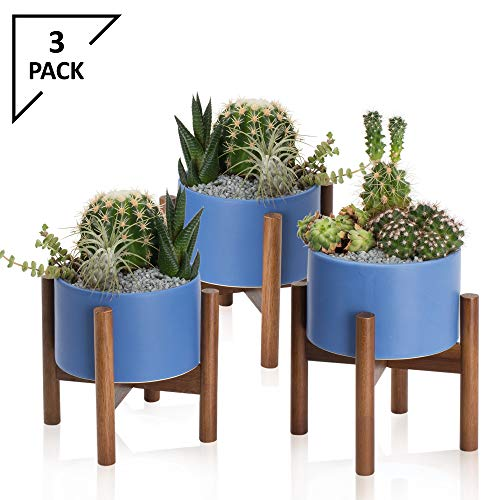 odern Blue Succulent Planter Tabletop | 5 Inch Pot with Wood Stand and Hidden Saucer | Round Ceramic Planters | Table Decor Pots | Cactus & Plant Container with Drainage Indoor ()